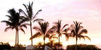 Best Resorts in Hawaii